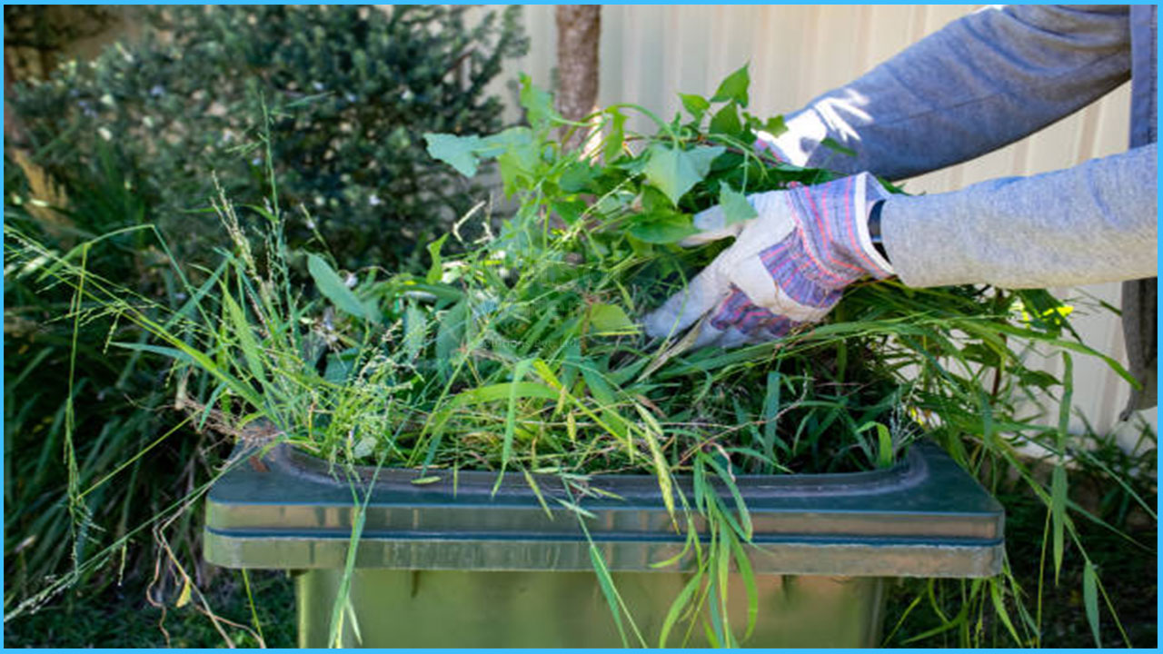 how green waste recycled, need & importance of green waste, netsolwater.com