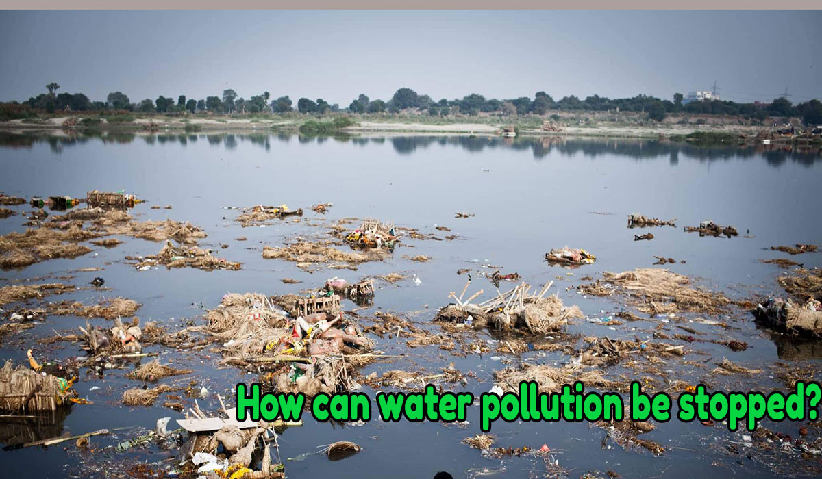 water pollutions, reason of water pollution, what cause water pollution, effect of polluted water on humans