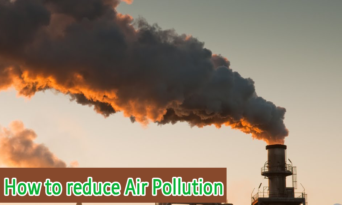 how to reduce air pollution, 5 ways to reduce air pollution, best way to reduce air pollution at home