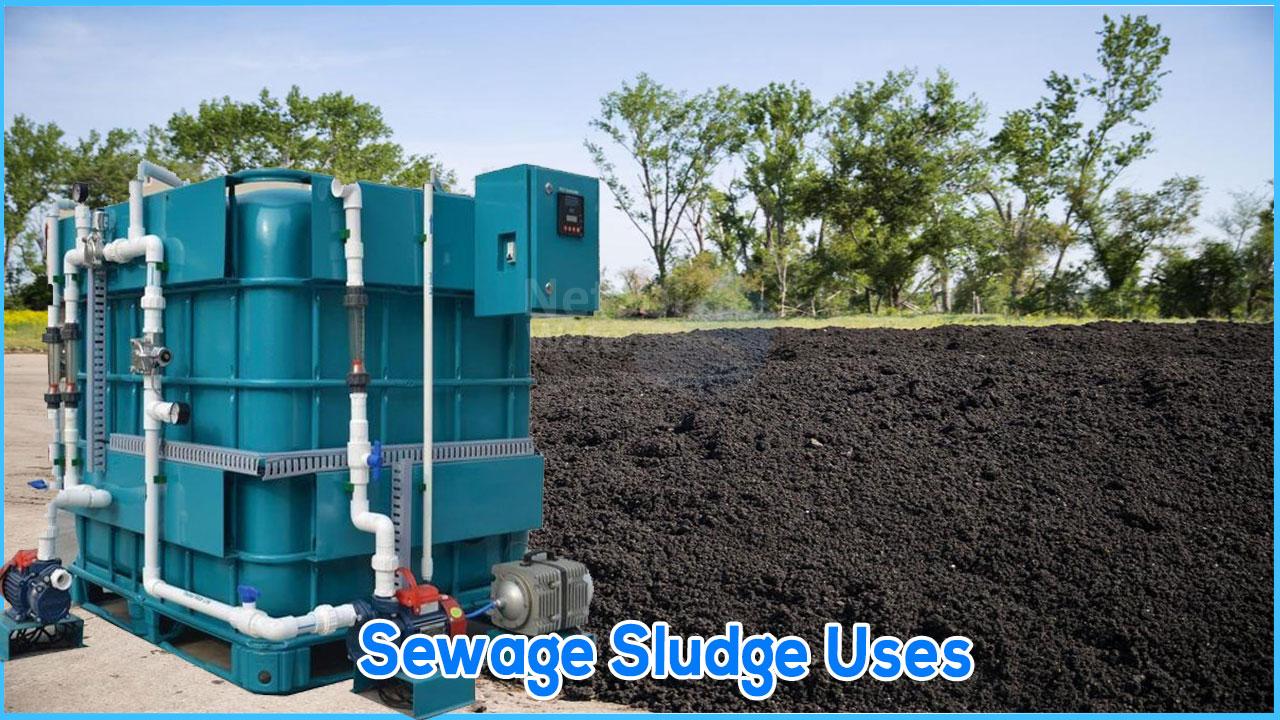 sewage sludge, sewage sludge for agriculture, use of STP sludge