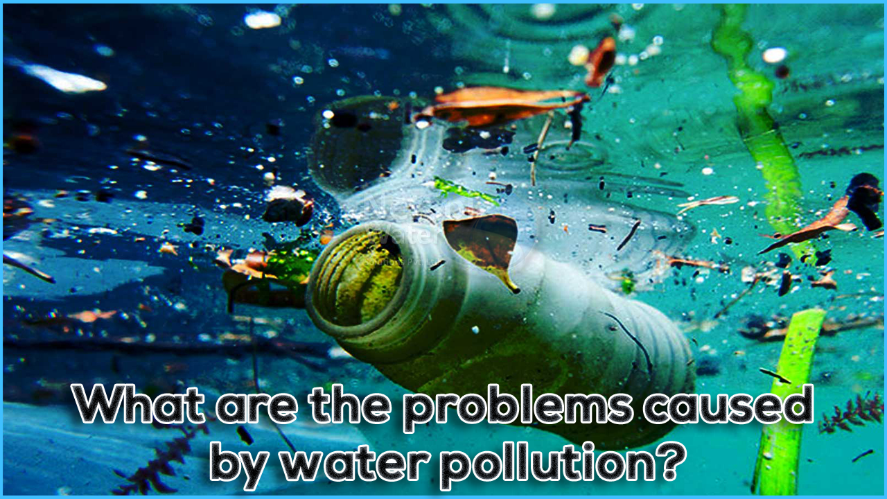 water pollution in india, water pollution causes, problems due to water pollution