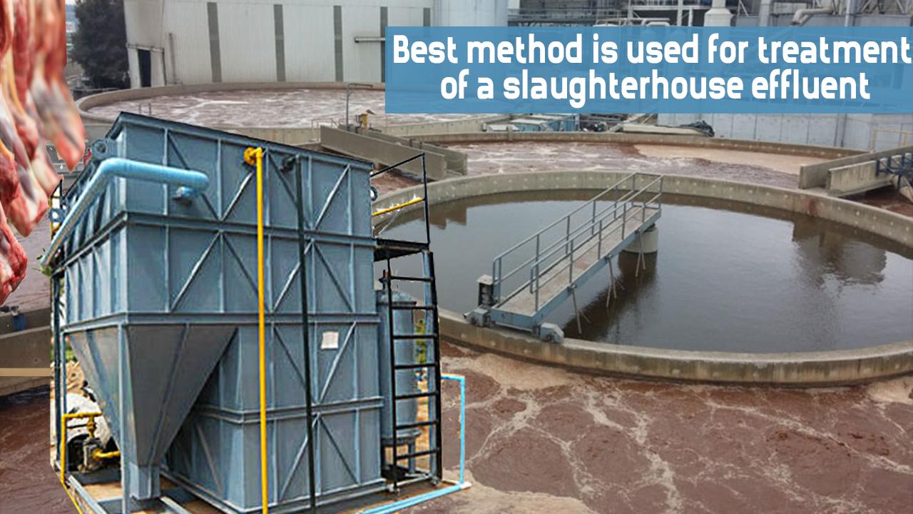 Slaughterhouse wastewater treatment, Slaughterhouse etp plant, Slaughterhouse etp manufacturers in india